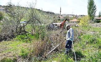 Mamak Belediyesi'nden haşere ile mücadele