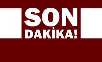 Cumhurbaşkanı Erdoğan: Yangından etkilenen yerler Afet Bölgesi ilan edildi