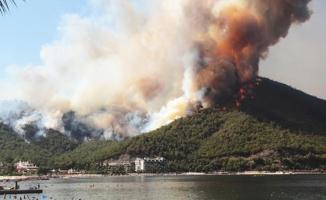 Türkiye'deki orman yangınları sonrası yeni tehlike!
