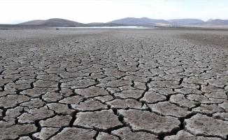 Kuraklık tarımın ve kuşların hayat kaynağı Patnos Barajı'nı da vurdu