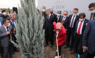 Ankara'da Muhtarlar Günü'ne özel hatıra ormanı oluşturuldu