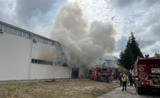 GÜNCELLEME - Eskişehir'de ambalaj fabrikasında çıkan yangın kontrol altına alındı
