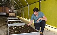 Kahramankazan'da yemek atıklarından solucan gübresi üretiliyor