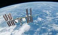 Uzaydaki küf sporları çok yüksek radyasyondan etkilenmiyor