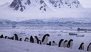 'Sanayileşmenin etkilerinden Antarktika da payını aldı'